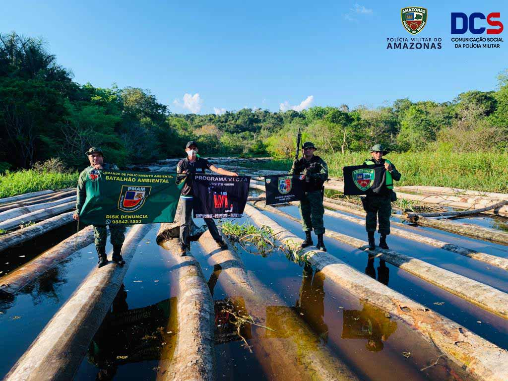 800 logs of Samaúma, Cedro, Mogno, Itaúba, Assacu seized near Santo Antônio